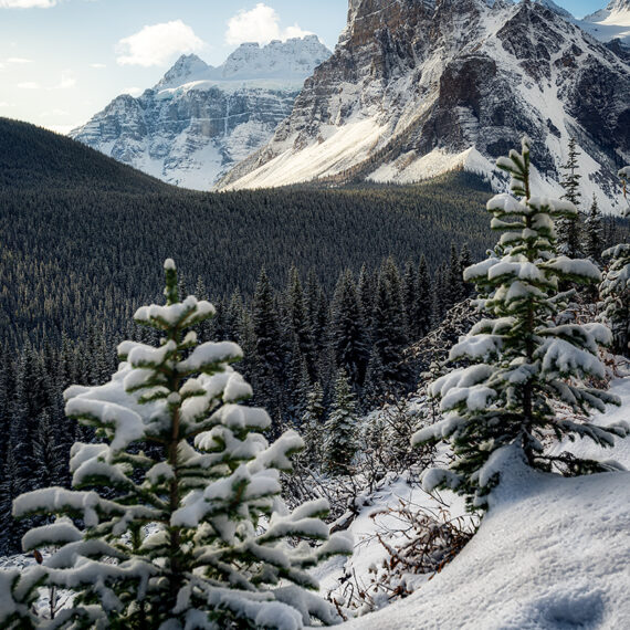 Canada Panorama Peak Mount Bell