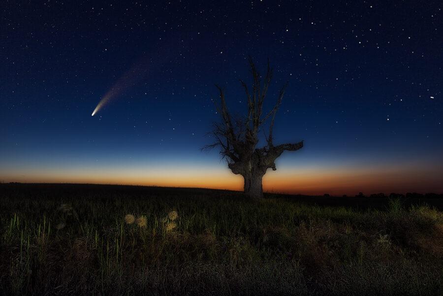 Guadalajara cometa NEOWISE C/2020 F3